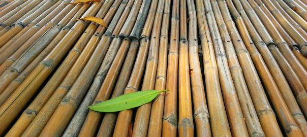 The Natural Beauty Of Sustainable Bamboo Flooring